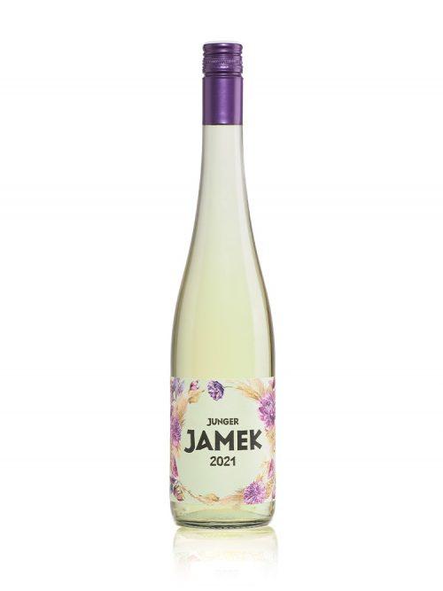 Junger_JAMEK_2021